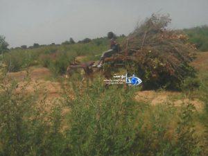 عربة للمزارعين الماليين تحمل بعض الحصاد