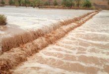 صورة مقاييس الأمطار على بعض مناطق الحوضين