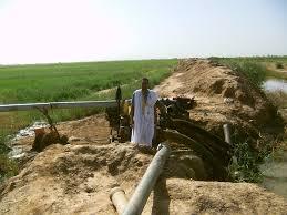 صورة اترارزة: الحكومة تقرر تحمل خسائر المزارعين في الضفة