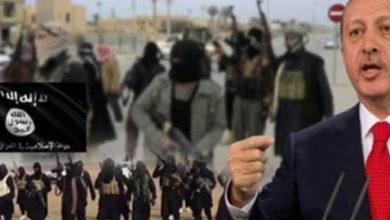 صورة تقارير تكشف عن دعم النظام التركي لجماعات متطرفة بشرق آسيا