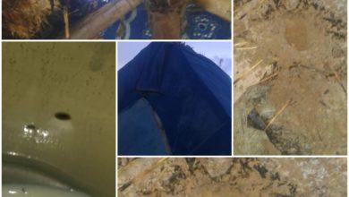 صورة لعيون: وفاة راعي اغنام بصاعقة رعدية وإصابة شخصين